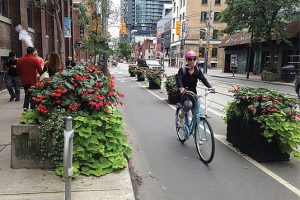 A woman biking in a protected bike lane with planters