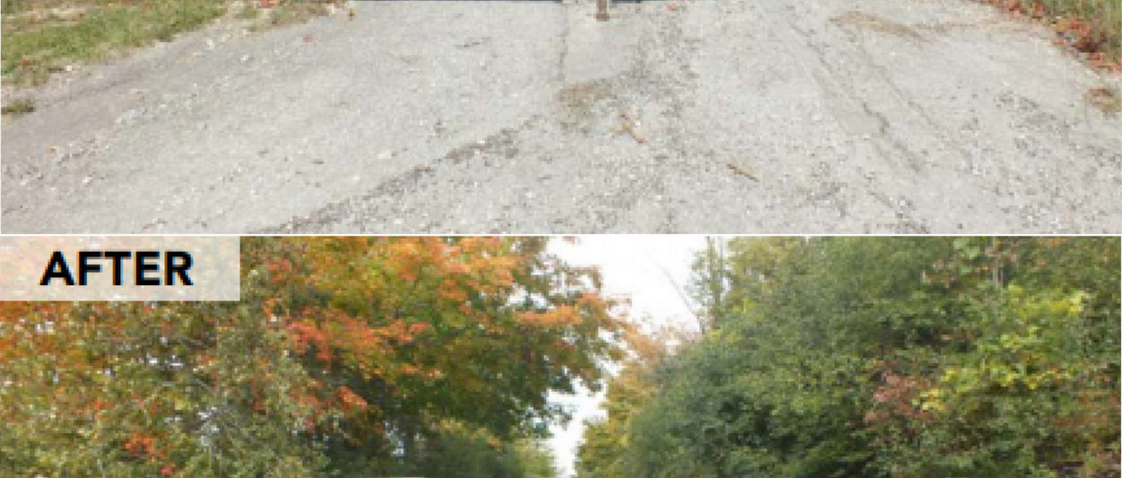 Before and after photos of a trail in Wellington